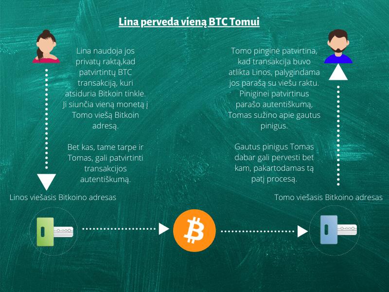 bitkoino informacijos adresas