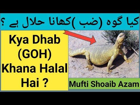 halal arba haram dvejetainis parinktis kaip visada laimėti dvejetainėse parinktyse